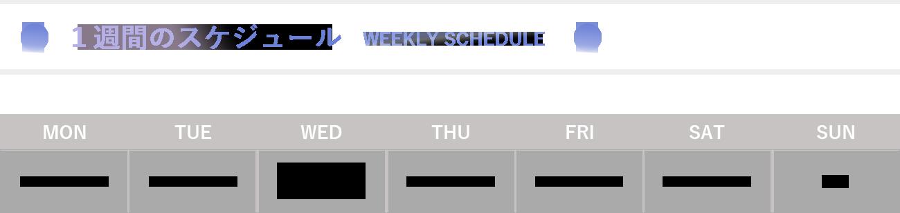 1週間のスケジュール